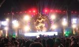EDM mania hitsIndia